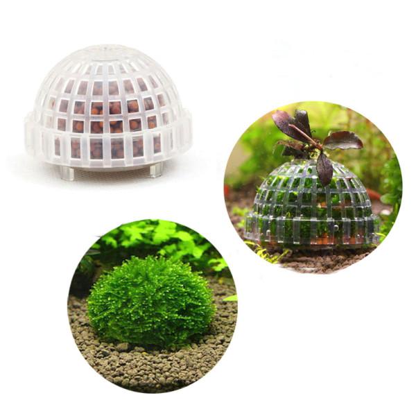 ETB Moss Dome mit Bodedengrund
