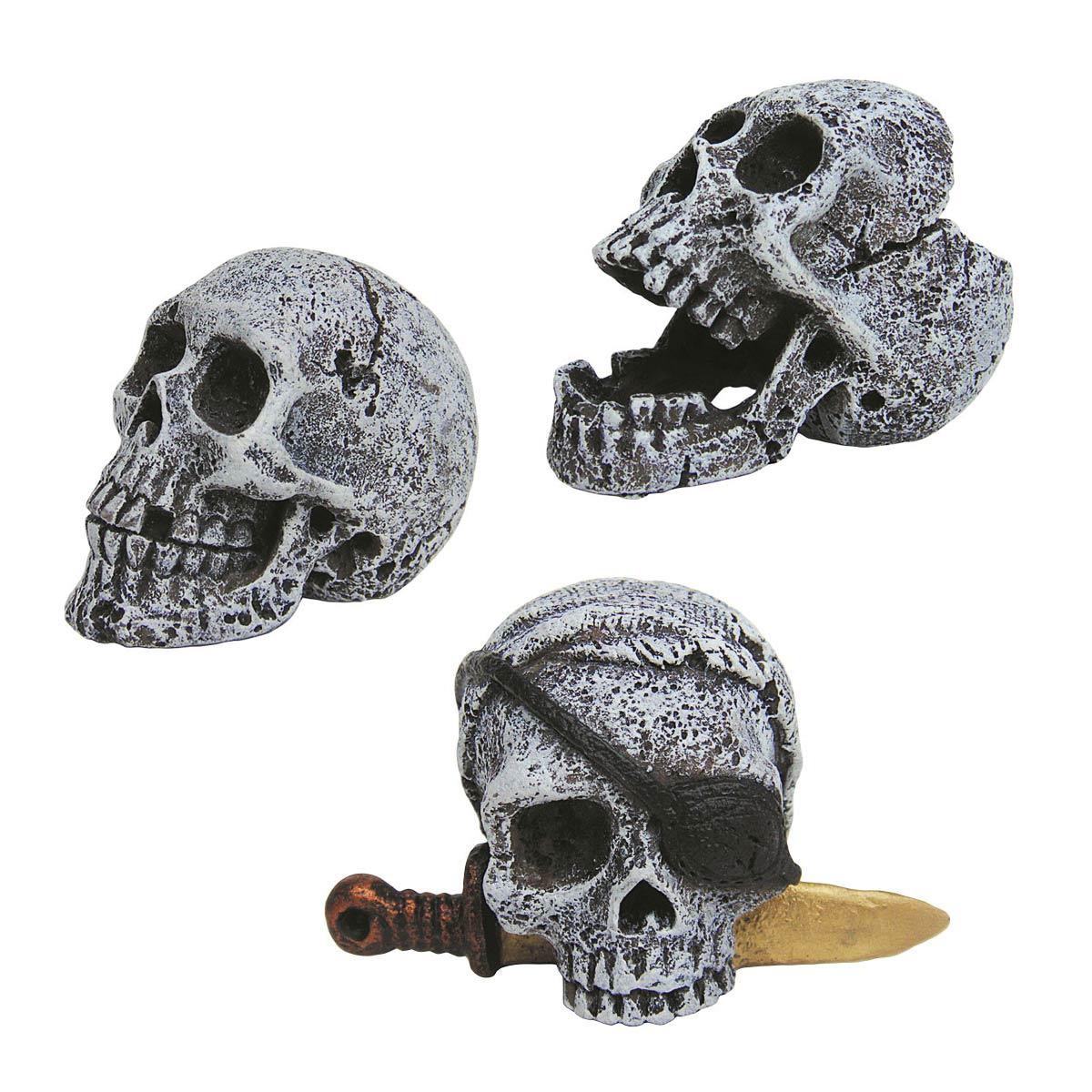 Nano Totenkopf Deko Gunstig Kaufen Im Naqua De Shop