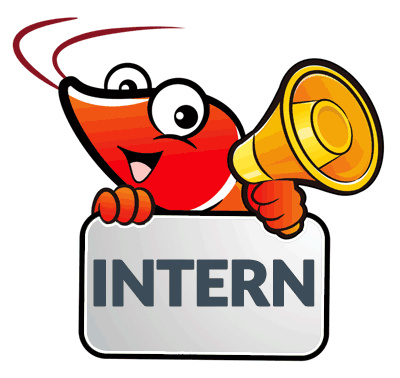 news-blog-intern