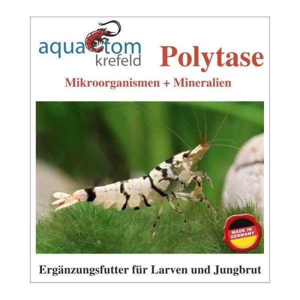 Polytase Mikroorganismen - Nahrungsergänzung für Garnelen